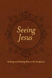 Seeing Jesus PDF