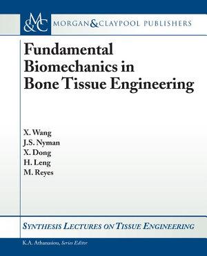 Fundamental Biomechanics in Bone Tissue Engineering