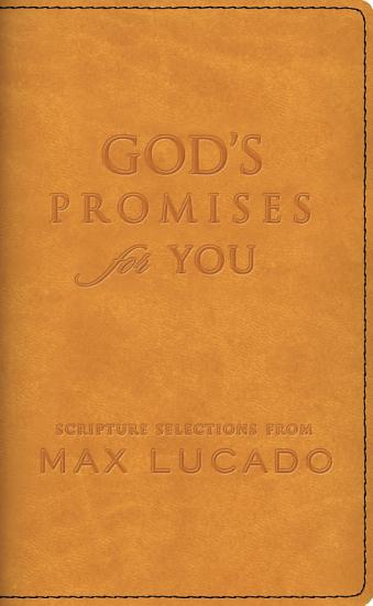 God s Promises for You PDF