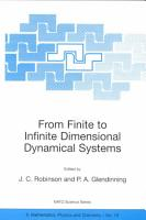 From Finite to Infinite Dimensional Dynamical Systems PDF