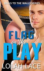 Flag On The Play (BWWM Interracial Romance)
