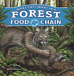 What Eats What in a Forest Food Chain PDF