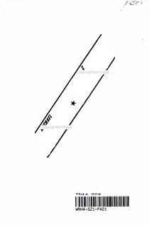 Michael Jordan  Magic Johnson PDF