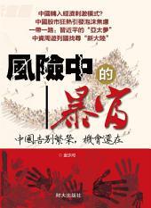 《風險中的暴富》: 中國告別繁榮,機會還在