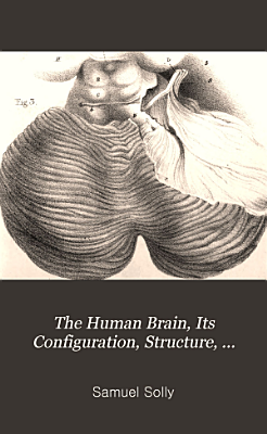The Human Brain  Its Configuration  Structure  Development  and Physiology PDF
