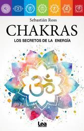 Chakras. Correspondencias y vitalidad energética.