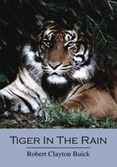 Tiger in the Rain