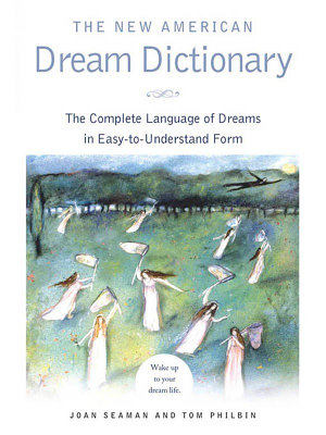 The New American Dream Dictionary PDF