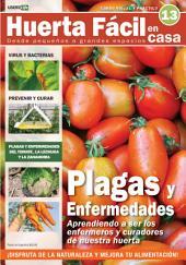 Huerta Fácil en casa13 - Cultiva desde pequeños a grandes espacios: Curso visual y práctico
