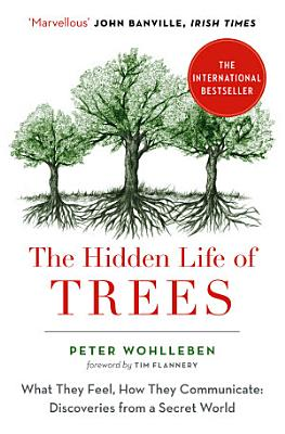 The Hidden Life of Trees  The International Bestseller     What They Feel  How They Communicate