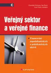 Veřejný sektor a veřejné finance: Financování nepodnikatelských a podnikatelských aktivit