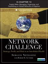 The Network Challenge  Chapter 13  PDF