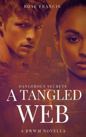 A Tangled Web: A BWWM New Adult Novella