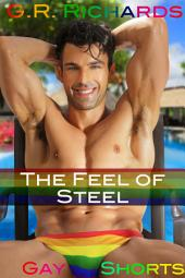 The Feel of Steel: Gay BDSM Erotica