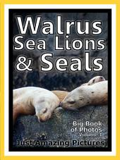 Just Walrus, Seals, and Sea Lions! vol. 1: Big Book of Walrus, Seal, and Sea Lion Photographs & Pictures