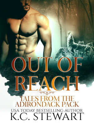 Out of Reach  Tales from the Adirondack Pack  Adirondack     PDF