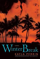 Winter Break: A Novel