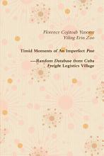 Timid Moments of an Imperfect Past PDF