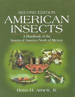 American Insects