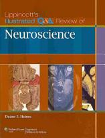 Lippincott s Illustrated Q A Review of Neuroscience PDF