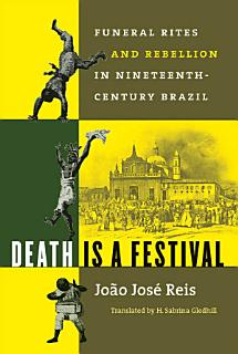 Death Is a Festival Book