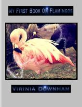 My First Book on Flamingos