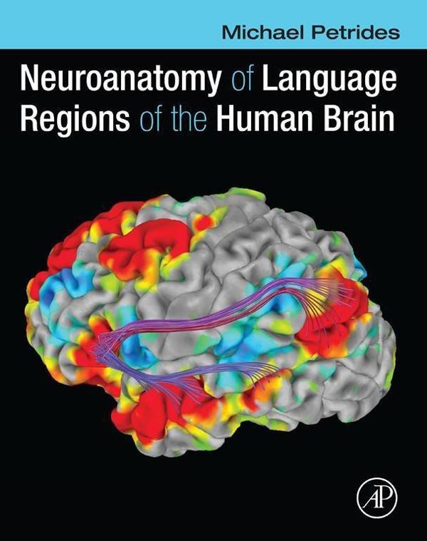 Neuroanatomy of Language Regions of the Human Brain