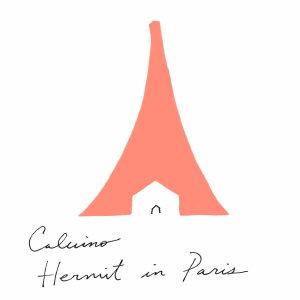 Hermit in Paris PDF