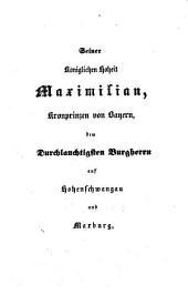Die Maxburg bei Hambach von Franz Xaver Remling