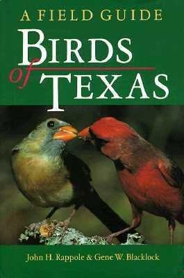 Birds of Texas PDF