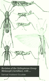 Revision of the Orthopteran Group Melanopli (Acridiiae), with Special Reference to North American Forms