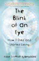 The Blink of an Eye PDF