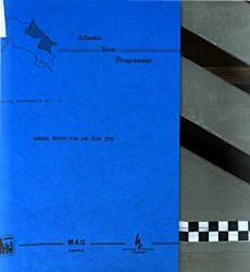 Annual Report for the Year 1989 PDF