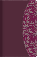 Rvr 1960 Biblia de Estudio Para Mujeres  Vino Tinto Fucsia S  mil Piel Con   ndice PDF