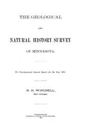 Annual Report - Geological and Natural History Survey of Minnesota: Issue 22