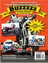 The Buzzzzz Rag: Volume 1 Issue 12
