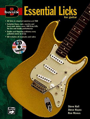 Basix Essential Licks for Guitar PDF