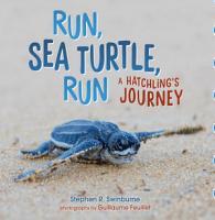 Run  Sea Turtle  Run PDF