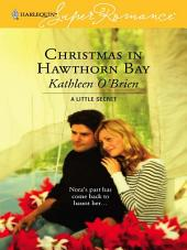 Christmas in Hawthorn Bay