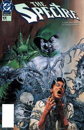 The Spectre (1994-) #17