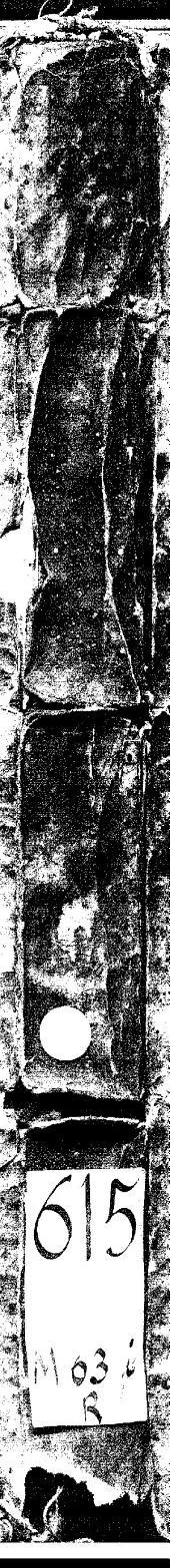 Ioannis Mesuae... Liber primus seu Methodus medicamenta purga[n]tia simplicia deligendi & castiga[n]di, theorematis quatuor absolutus