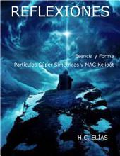Esencia y Forma, Partículas Super Simétricas y MAG Kelipót