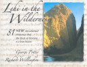 Download Lehi in the Wilderness Book