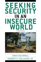 Seeking Security in an Insecure World PDF