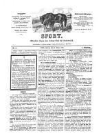 Sportblatt PDF