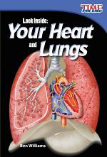 Look Inside: Your Heart and Lungs 6-Pack