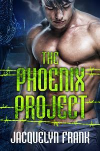 The Phoenix Project PDF