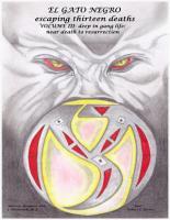 El Gato Negro Escaping Thirteen Deaths Volume 3 Deep In the Gang Life  Near Death to Resurrection PDF