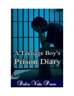 A Teenage Boy's Prison Diary