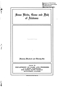 Some Birds  Game and Fish of Alabama PDF